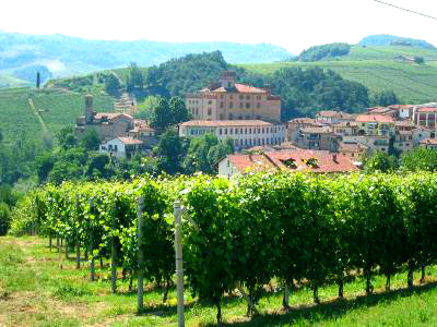 Barolo wine route & vineyards Italy -Nicholas Baumgartner