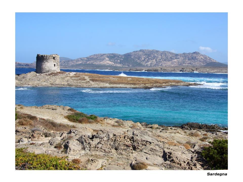 Sardinian Castle