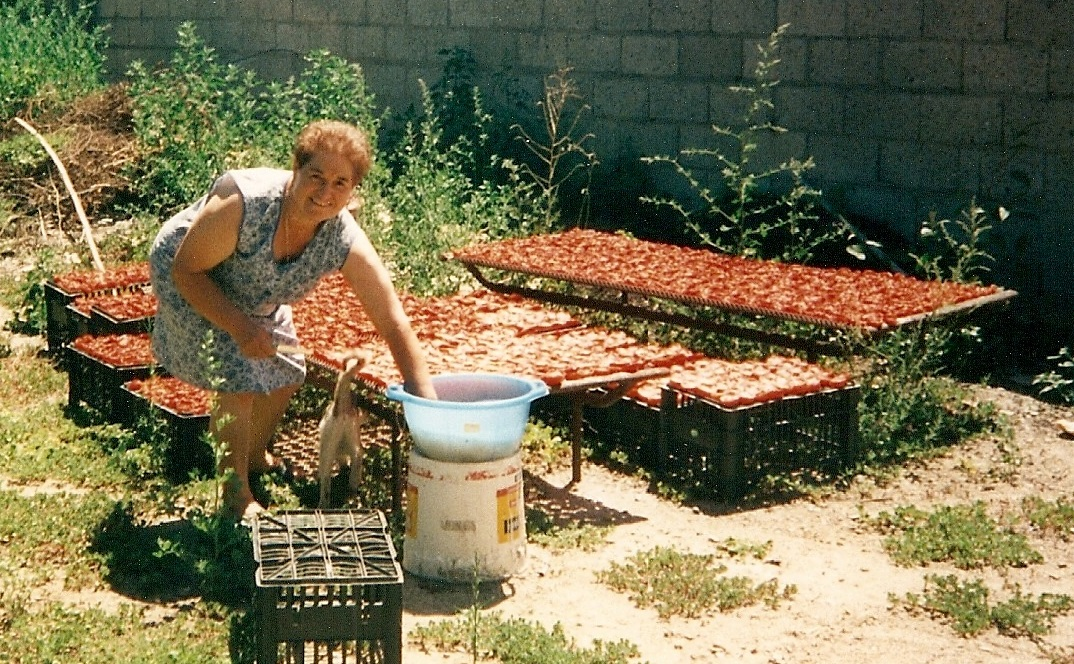 Sun dried tomatoes in Italy
