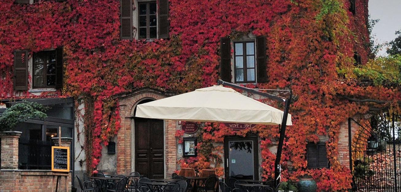 Aromatorio Neive, Langhe Piedmont