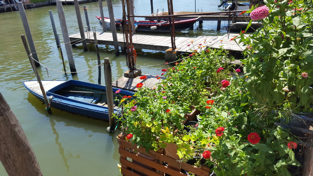 Boats and flowers on the San Pietro di Castello canal.