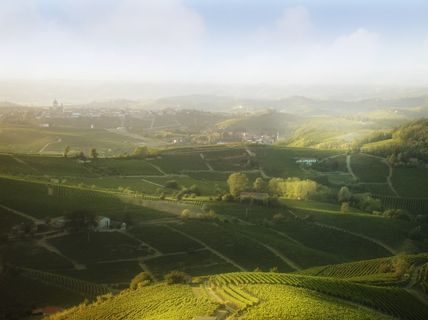 Langhe by Alexander Strahilov