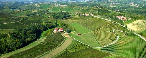 wine estates in Piedmont Italy