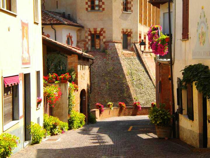 Piedmont Langhe