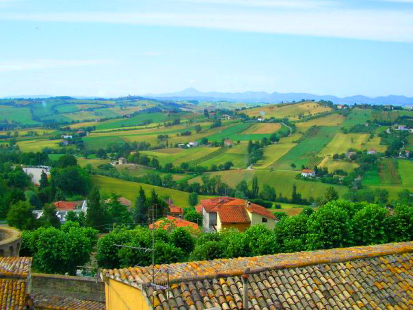 Le Marche Country Scene