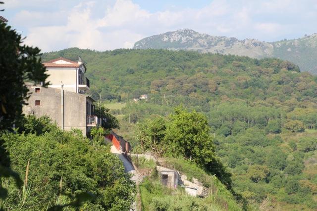 Hill Calabria