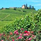 Piedmont Italy