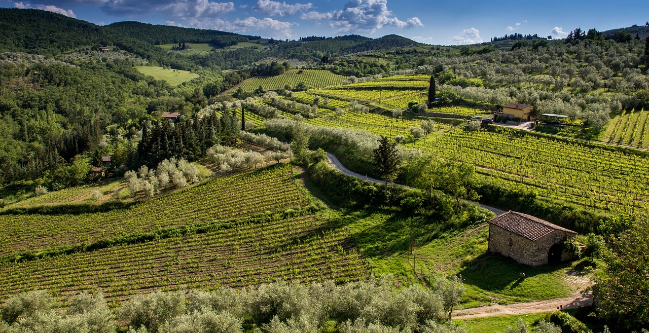 Walks and Hikes in Tuscany