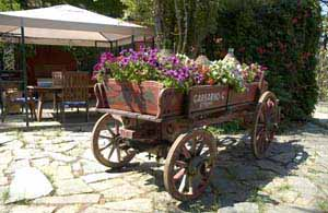 old cart in Italy