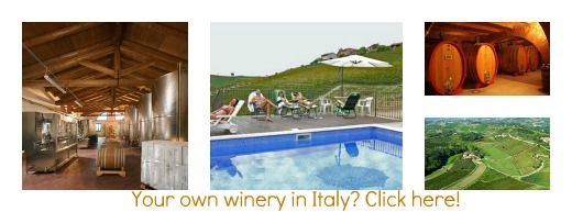 winery for sale Italy