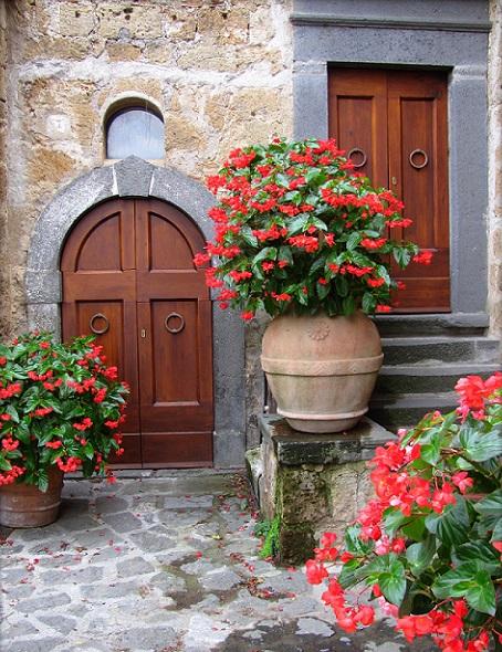 Flowers in Civita di Bagnoregio, Italy