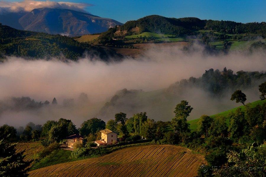 Misty Morning near Urbino - Le Marche