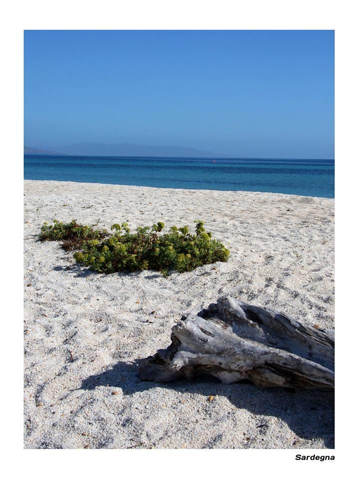Sardinian Beach
