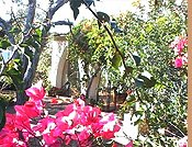 Countryside bed and breakfast Alghero