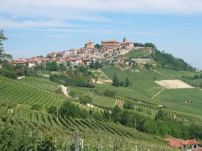 Italian Hills near Barolo