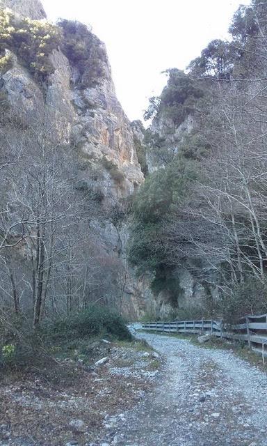 Mountain Road - Calabria