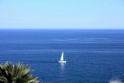 Sailing the Ligurian Seas