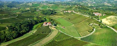 wine estates in Piedmont Italy