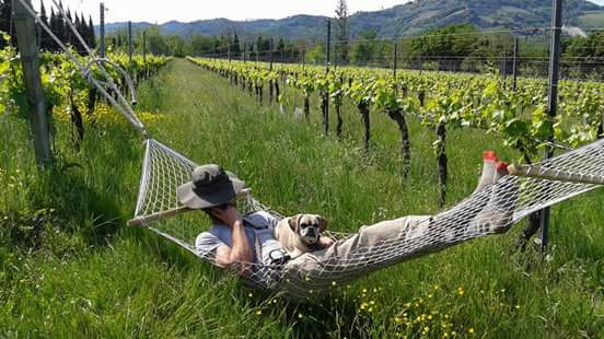 Another hard day at work on an Italian farm.