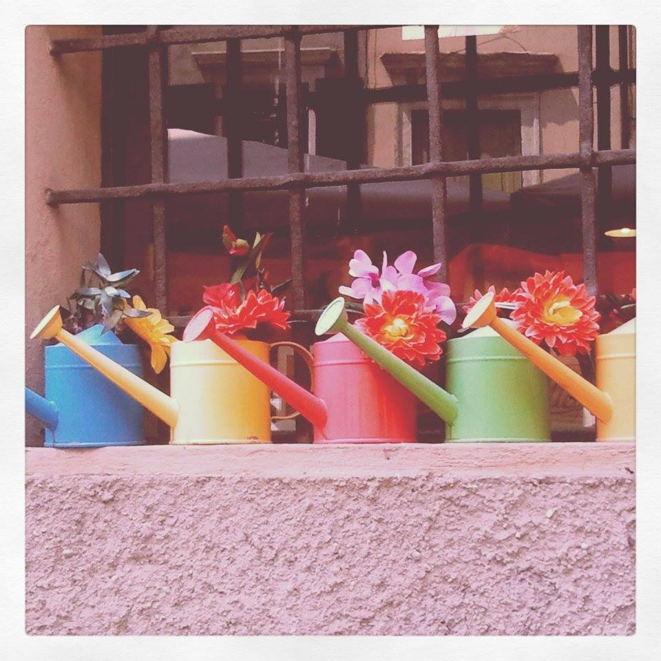 Watering Can Window Boxes